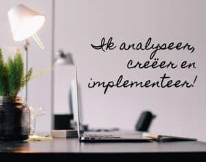 Ik analyseer, creer en implementeer. Internet advies en marketing.