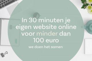 Maak je eigen website in 30 minuten voor minder dan 100 euro