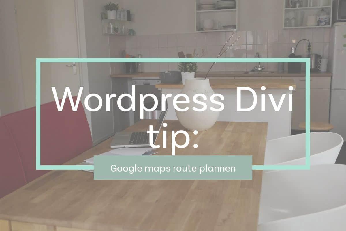 Snelle tip voor Google Route in Divi